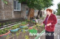 Управляющие компании и активные кызылчане включились в борьбу за победу в конкурсе на лучшее благоустройство дворов и территорий столицы Тувы