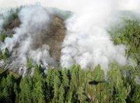 В Туве действуют 11 лесных пожаров