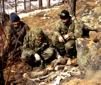 Шкуры животных, ставших жертвами браконьеров. Фото Сергея Чумакова
