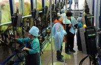 В Туве открыли современную молочно-товарную ферму