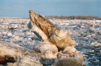 В Туве ранний ледоход вызвал подтопление дачных участков