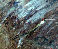 В Сибири действуют 43 очага лесных пожаров