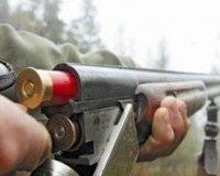 Охотники Тувы в разы увеличили отстрел волков