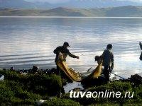 Власти Тувы считают необходимым увеличить квоты на вылов рыбы