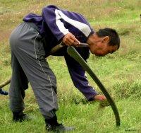 В Туве объявлен конкурс среди лучших молодежных бригад косарей