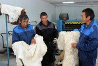 В одном из сел Тувы заработал мини-цех по производству меховых изделий