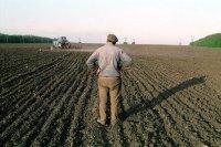 В Туве начался сев зерновых и кормовых культур