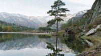 Алтайские памятники и горловое пение могут дополнить наследие ЮНЕСКО