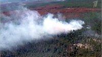 В Туве пожарные ликвидировали два лесных пожара на Тодже и локализовали один – в Каа-Хемском районе