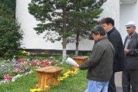 Работу создателей «Цветущего Кызыла» оценит конкурсная комиссия