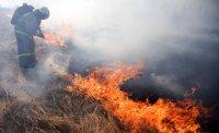 Тушение лесного пожара в Тандинском районе Тувы осложняет сильный ветер