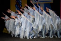 """Детская хореографическая школа Кызыла обрела """"автономный"""" статус и Наблюдательный совет"""