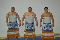 В Кубке Европы по сумо среди клубных команд выступят две команды из Тувы