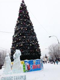 У жительницы Эрзина воры под Новый год похитили 100 тысяч рублей