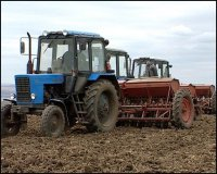 Полеводы Тувы готовятся засеять зерновыми на 18% больше площадей