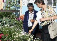 """Неравнодушных кызылчан, благоустраивающих родной город, выявит конкурс """"Цветущий Кызыл"""""""