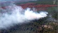 В Туве борются с 11 лесными пожарами