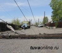 В Туве во время штормовых ветров деревья обрывали провода