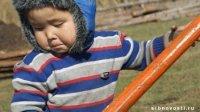 68 процентов детей в Туве рождаются вне брака