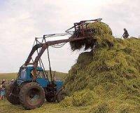 В Туве на заготовке кормов лидируют Каа-Хемский, Тандинский и Барун-Хемчикский районы