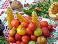 На главной площади Кызыла развернется выставка плодов и овощей