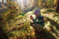 В Туве определены участники Всероссийского слета школьных лесничеств
