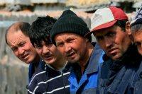 Наименьшее количество мигрантов в Ингушетии, Туве, Еврейской автономной области