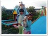 В Туве в 2014 году количество мест в дошкольных учреждениях увеличится на 5,3 тысячи