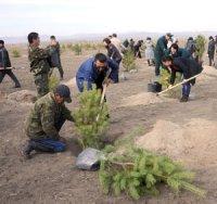 В Туве начался месячник по благоустройству и озеленению населенных пунктов