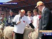 36 тувинских племенных овец представлены на Сибирско-Дальневосточной выставке