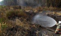 В Туве ликвидируют три лесных пожара, причиной которых стали грозы