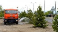 «Зеленая комиссия» Кызыла провела предварительную инвентаризацию приживаемости саженцев, посаженных в этом году