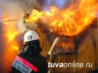 За прошедшие сутки в Туве ликвидировано пять пожаров