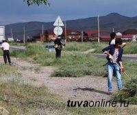 Кызылчане активно включились в борьбу с чашпаном