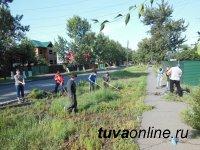 Кызыл: Улицу Колхозную очищают от  бурьяна волонтеры