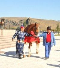 Тувинская лошадь «Визирь» впервые в истории конного спорта Тувы стала победителем на Всероссийских соревнованиях по троеборью