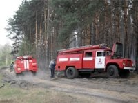 В Туве действуют 13 лесных пожаров