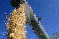 Земледельцы Тувы завершают уборку урожая