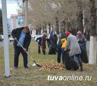 На северном въезде в Кызыл на субботнике собран трактор мусора