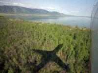 Тува находится на 11-м месте по количеству леса на душу населения