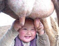 Каа-Хемский кожуун. О правах ребенка и не только