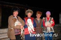 Поголовье племенного скота в Туве приближается к 28 тысячам