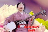 9 марта в Туве расцветёт сакура