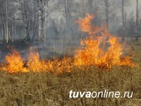 В Туве установилась жаркая погода, вводится особый режим посещения лесов