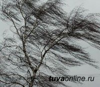 В Туве стоит сухая и очень ветренная погода