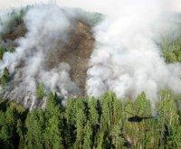 В Туве действуют три лесных пожара
