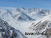 Обнаружено 5 новых барсов на Алтае и в Туве