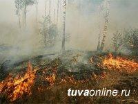 В Туве действуют четыре лесных пожара
