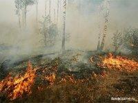 За сутки в Туве удалось ликвидировать один крупный пожар