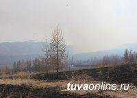 За сутки в Туве ликвидированы три крупных пожара